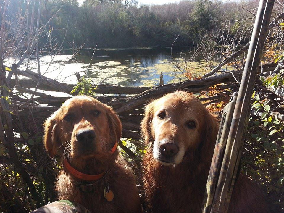 Rusty and Sam